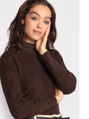 Pull manches longues marron fonce femme